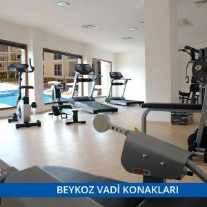 beykoz-vadi-konaklari-3-300x300