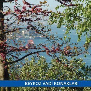 beykoz-vadi-konaklari-9-300x300