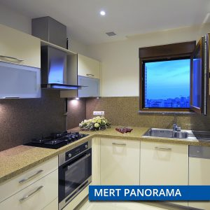 mert-panorama-3-300x300